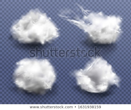 Cotton wool stock photo © deyangeorgiev