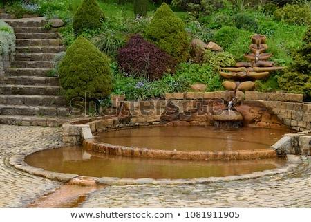 piscina · calice · bene · giardini · viaggio · pace - foto d'archivio © chrisdorney