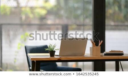 аннотация компьютер рабочая станция ЖК технологий Сток-фото © artush