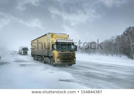 Caminhão gelo estrada nevasca carga recipiente Foto stock © ssuaphoto