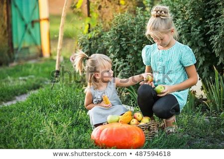 dos · niñas · cesta · alimentos · orgánicos · pan - foto stock © hasloo