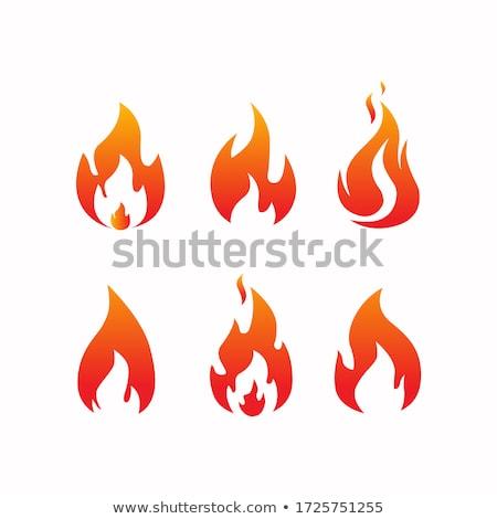 Blaze fire  Stock photo © scenery1