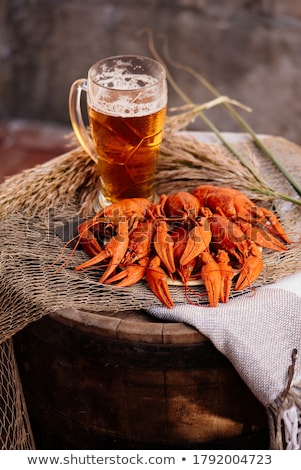 beer and cancers  Stock photo © OleksandrO