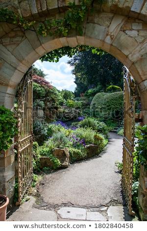 Görmek kapı bakıyor bahçe demir sokak Stok fotoğraf © smartin69
