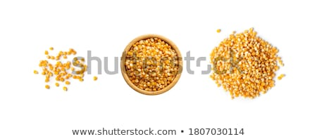 Dried corn or maize kernels Stock photo © ozgur