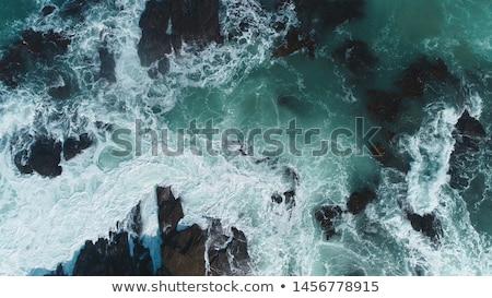 Plaj siyah beyaz görüntü kuzey Kaliforniya ABD Stok fotoğraf © Backyard-Photography