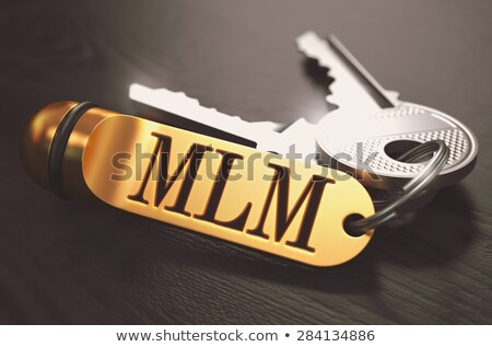 Mlm sleutels gouden niveau marketing zwarte Stockfoto © tashatuvango