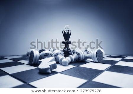 piezas · de · ajedrez · bordo · tablero · de · ajedrez · ajedrez - foto stock © creisinger