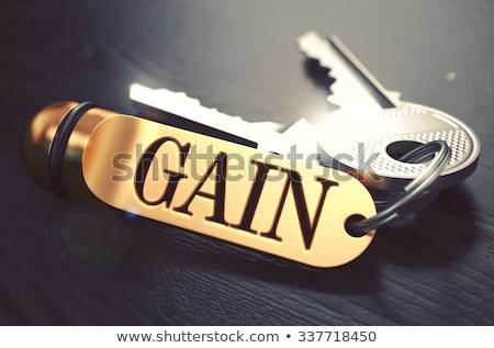 kulcsok · szó · haszon · arany · címke · fekete - stock fotó © tashatuvango