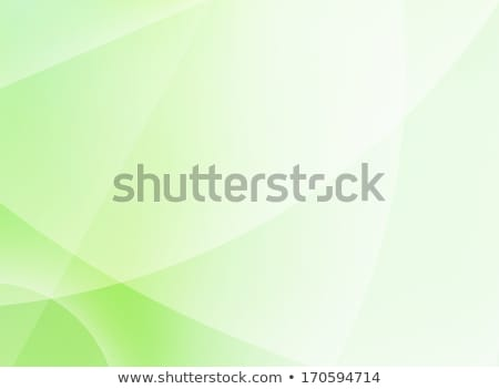 Abstract green background. EPS 10 Stock photo © beholdereye