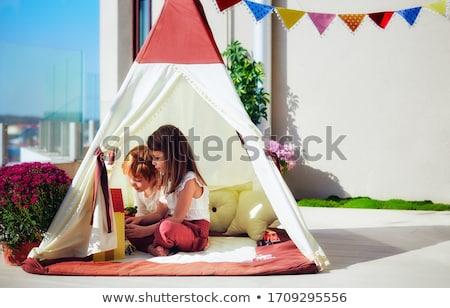 Home yard Stock photo © simply