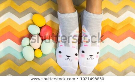 Stok fotoğraf: Paskalya · yumurtası · yeşil · piknik · battaniye · renkli · eps · 10