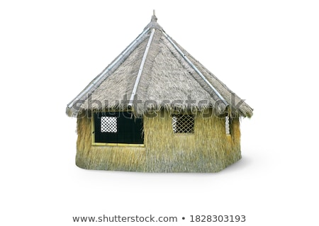 Isolated Hut Stock photo © naffarts