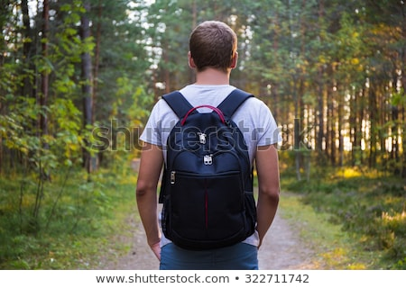 Widok z tyłu człowiek plecak spaceru lasu Zdjęcia stock © wavebreak_media