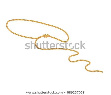 ロープ · ベクトル · 芸術 - ストックフォト © vector1st