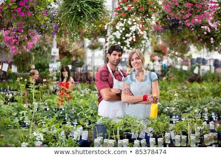 Man inspecting plants in nursery Stock photo © IS2