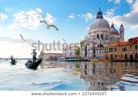 Gondolas and a seagull Stock photo © Givaga