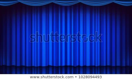 üres színpad kék függöny illusztráció terv Stock fotó © bluering