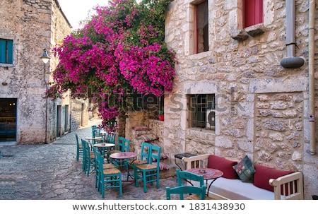 çok binalar köy örnek yol manzara Stok fotoğraf © colematt
