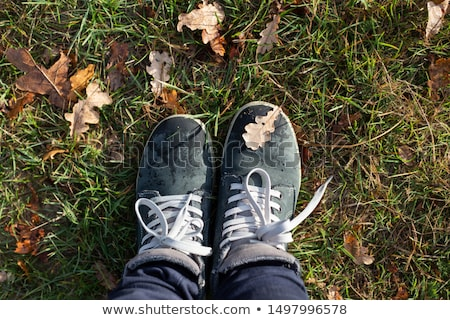 Feet sneakers walking on fall leaves in park with Autumn season nature on background Lifestyle Fashi Stock photo © galitskaya