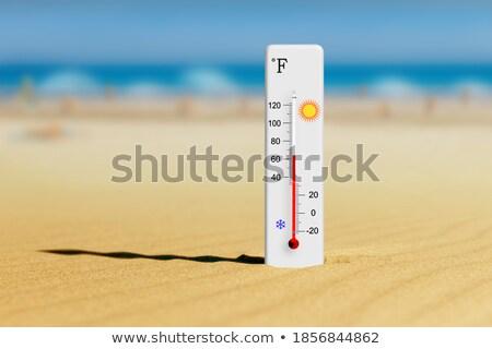 Verão aquarela férias de verão cartaz bandeira vetor Foto stock © balasoiu