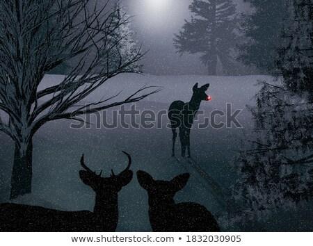 Stok fotoğraf: Geyik · Noel · gece · köy · kırmızı