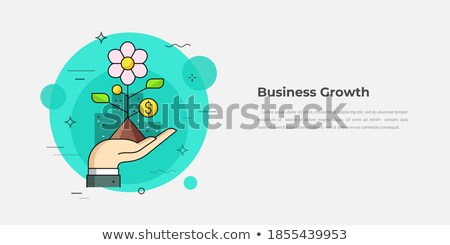 Business Growth Graphics and Flowcharts, Teamwork Stock photo © robuart