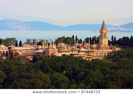 Golden roof of Topkapi palace in Istanbul, Turkey Stock photo © boggy