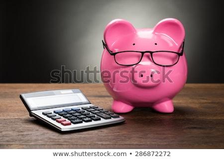 Bilancio consulenza finanziaria mutui soldi occhi Foto d'archivio © AndreyPopov