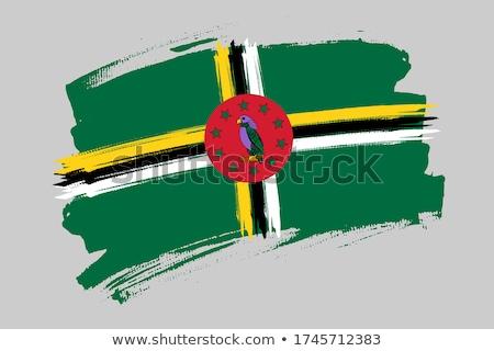 Dominika zászló fehér festék felirat ecset Stock fotó © butenkow