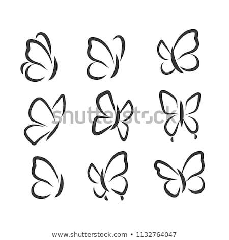 Insekt Symbol einfache schwarz Silhouette grau Stock foto © evgeny89