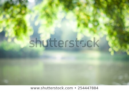 Stock photo: Summer lake dawn panorama