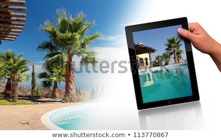 femme · tropicales · jardin · vacances · eau · main - photo stock © kurhan