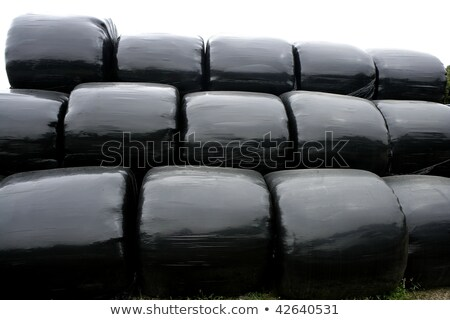 Fekete műanyag csomagolás borító gabonapehely búza Stock fotó © lunamarina