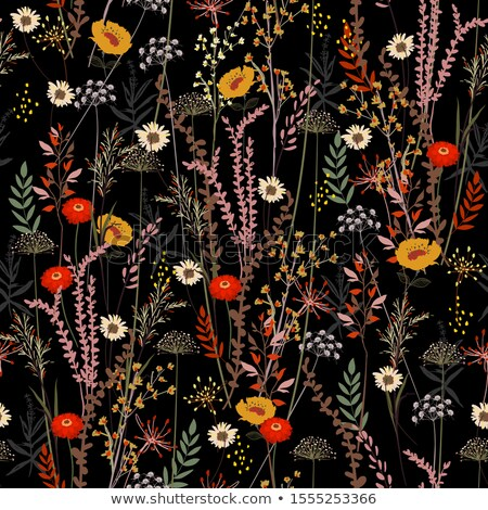 Abstract Meadow Floral Stock photo © derocz