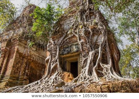 piramidy · świątyni · Kambodża · sztuki · architektury · religii - zdjęcia stock © prill