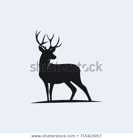 Preto ícones caça cão bússola faca Foto stock © zelimirz