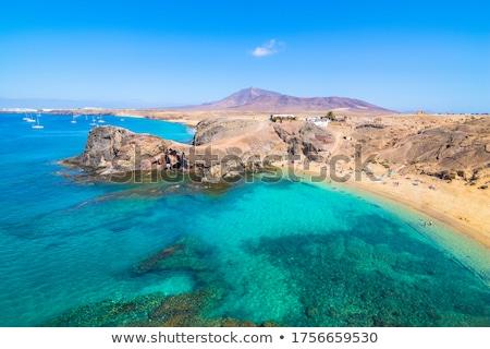 volcano and sea in lanzarote Stock photo © njaj