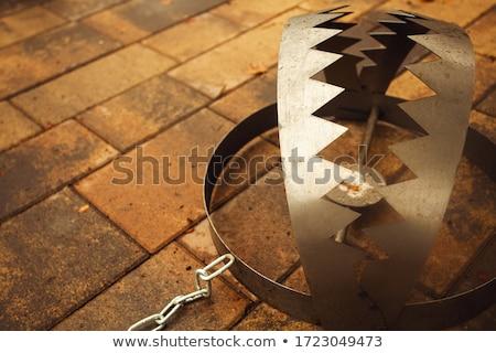 несут ловушка цепь изолированный белый Сток-фото © cherezoff