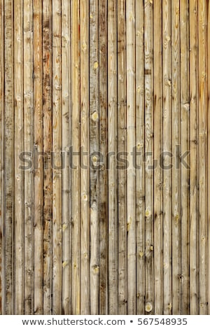 Stockfoto: Wood Panel With Chipped Paint Grunge Style
