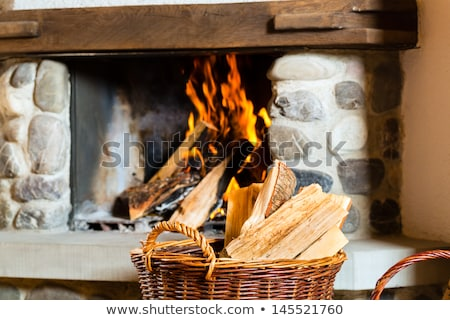 Hunters hut in the mountain Stock photo © Kotenko