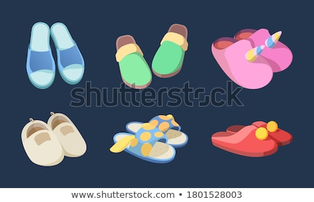 Icons with pairs of slippers Stock photo © bluering
