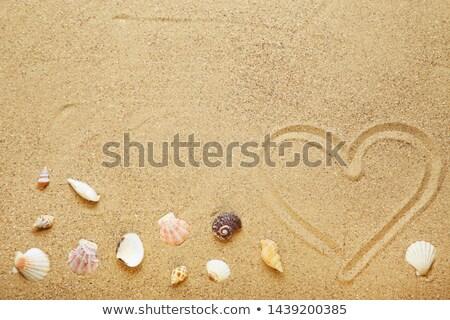 coração · areia · casamento · relaxar · ilha - foto stock © digifoodstock