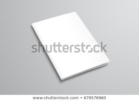 Prospektus oldal vázlat sablon terv vektor Stock fotó © SArts