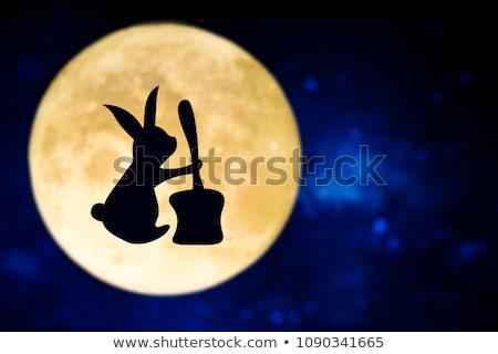 moon rabbit with immortality elixir stock photo © trikona