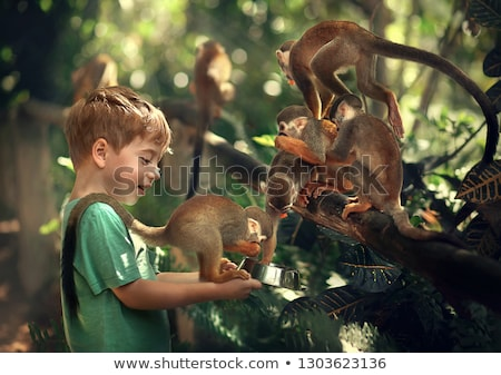 Mono nino elegir color figura libro para colorear Foto stock © Olena