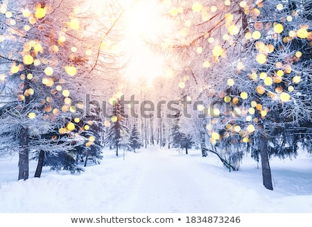 winter holidays card with snowy landscape stock photo © orson
