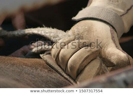 Gloves and rope Stock photo © wavebreak_media