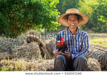 молодые азиатских фермер сено рук Сток-фото © RAStudio
