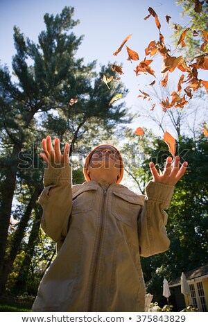 Boy throwing leaves into the air Stock photo © IS2
